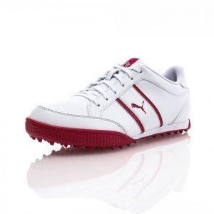 Puma Golf Monolite Cat Womens Leather Golfkengät Valkoinen / Roosa