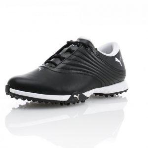 Puma Golf Puma Blaze Golfkengät Musta / Valkoinen
